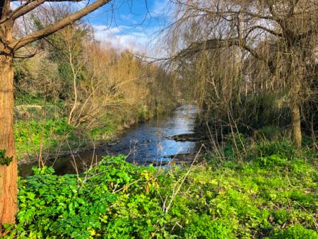 Picture of a stream in Dublin, Ireland